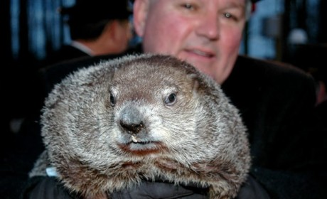 Groundhog Day 2012 Results: Shadow! Winter to Continue!