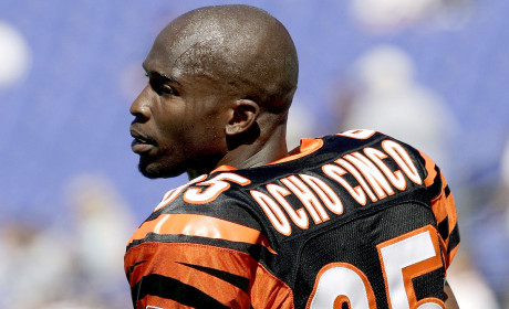 Chad Johnson: Is His Career Over?