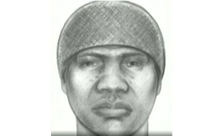NYC Tourist Raped, Police Release Sketch of Suspect