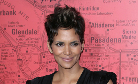 "Halle Berry Confirms Pregnancy, Feels ""Fantastic"""