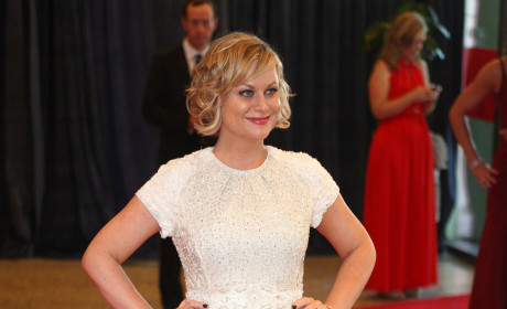 Amy Poehler Red Carpet Pose