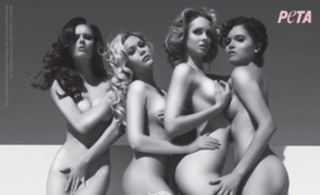 Miss USA Winners Nude