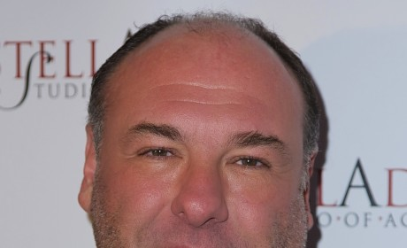 James Gandolfini Dies of Heart Attack; The Sopranos Star Was 51
