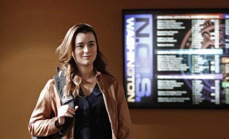 NCIS Season 11 Shocker: Who's Leaving?