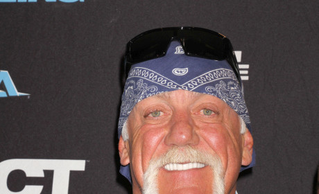 Hulk Hogan Biopic: Sort Of in the Works!
