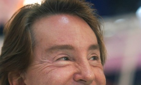 Ty Warner, Beanie Babies Creator, Pleads Guilty to Tax Evasion