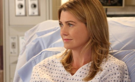Ellen Pompeo as Meredith
