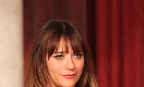 Rashida Jones as Ann Perkins