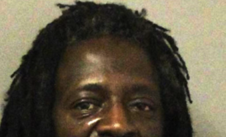 New Flavor Flav Mug Shot