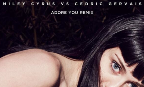 """Miley Cyrus: Half-Naked for """"Adore You"""" Remix Artwork"""