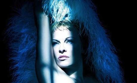 Pamela Anderson Nude Photo