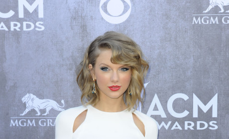 Academy of Country Music Awards Fashion: Best & Worst Dressed