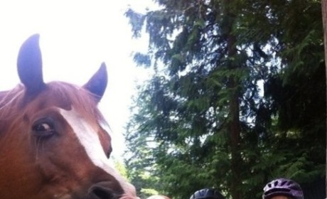 Girls Photobombed by Horse