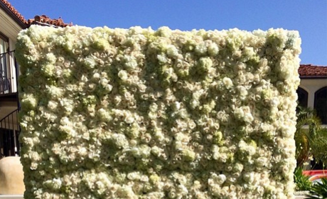 North West Poses in Front of Flower Wall, Coos on Camera