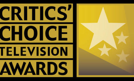 2014 Critics Choice Awards: Who Won?