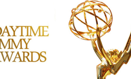 2014 Daytime Emmy Awards: And the Winners Are...
