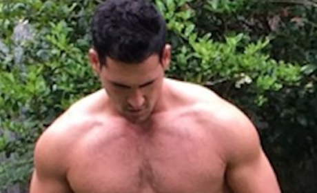 The Bachelorette Shirtless Showdown: Who's Hotter, Josh Murray or Nick Viall?