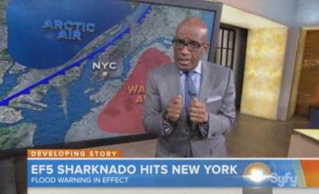 Al Roker in Sharknado 2