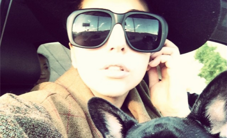Lady Gaga and Dog Selfie