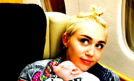 Miley Cyrus Adopts a Pig: Meet Bubba Sue!