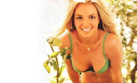 Britney Spears Bikini Wallpaper
