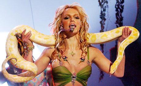 Britney Spears, Snake