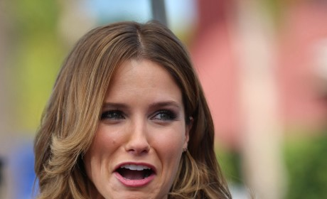 "Sophia Bush Puts Internet Stalker on Blast, Urges ""Perverse Monster"" to Get Help"