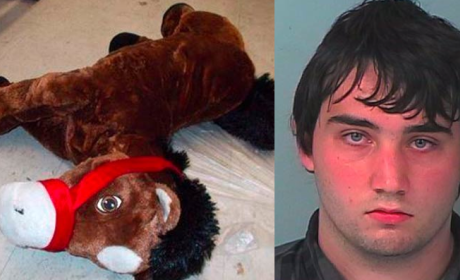 Florida Man Arrested For Making Love to Stuffed Horse at Walmart