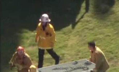 Harrison Ford Post-Plane Crash
