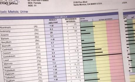 Yolanda Foster Medical Chart