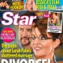 Sarah-palin-divorce