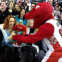Rachel McAdams: Courted by Raptors Mascot!