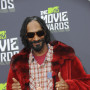 Snoop-at-the-mtv-movie-awards