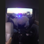 Jose Canseco, Pet Goat Pulled Over by Police