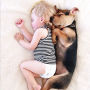 Puppy and Baby Continue to Nap Together, Melt Internet Completely