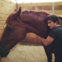 Ian Somerhalder and Nikki Reed: Adopting a HORSE!
