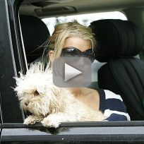 Jessica Simpson on Entourage