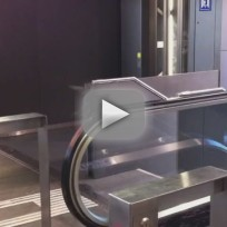 Pigeon on Escalator