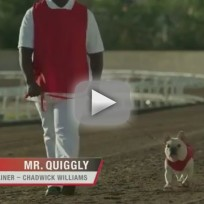 Skechers Super Bown Ad Teaser: Mr. Quiggly for GOrun