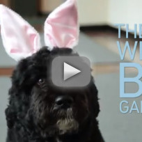 Bo-obama-easter-video