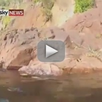 Crocodile Jumps Onto Tourist