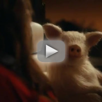 GEICO Ad - Maxwell the Pig on a Date