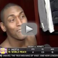 Metta world peace too sexy for his cat