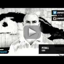 Pitbull-open-letter