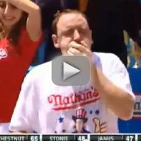 Joey chestnut hot dog eating record