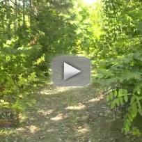 Girl Survives Bear Attack