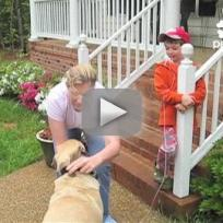 Dog Acts as Dentist