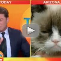 Grumpy Cat TV Interview