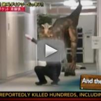Dinosaur Prank Frightens Office Workers