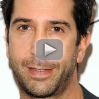 David schwimmer targeted with anti ross graffiti